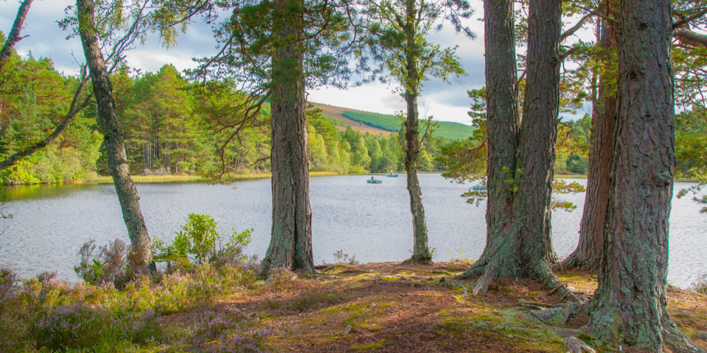 Glentanar_Estate_lodge_slideshow_34